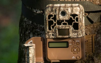 Trail cameras are not just for hunting… protect your property.